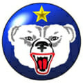 U.S. Army Alaska logo